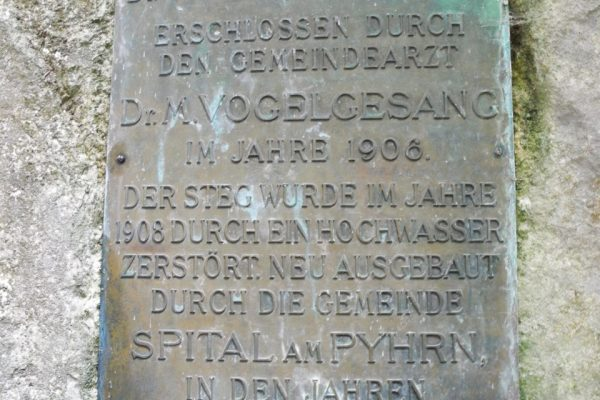 DSCN3683
