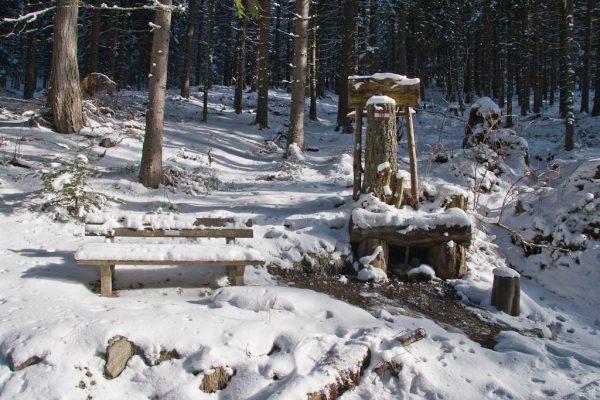 20110129-amundsenhoehe-04