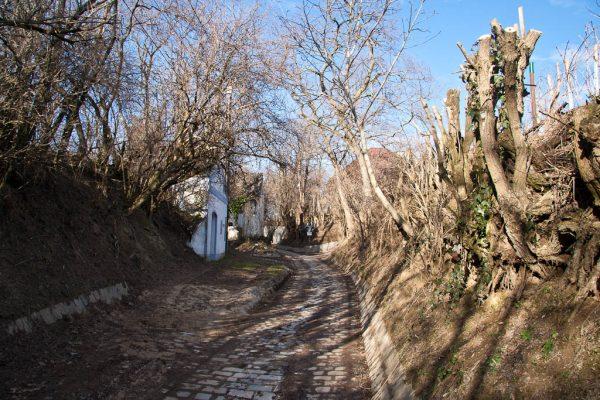 20110212-stadtwanderweg5-01