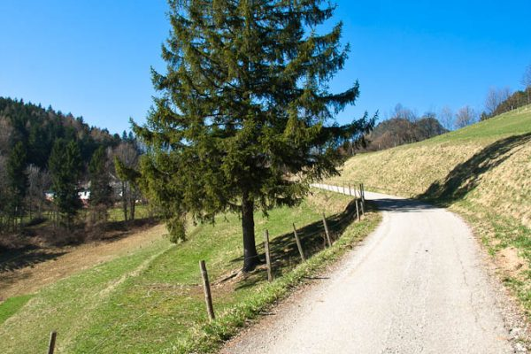 20110403-plattenstein-04