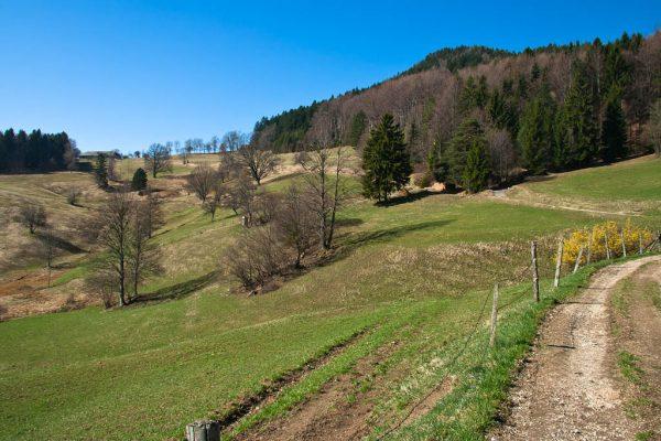 20110403-plattenstein-05