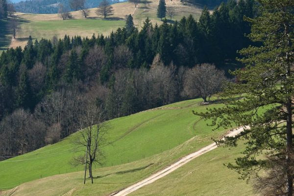 20110403-plattenstein-10