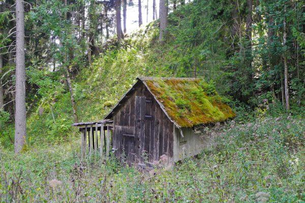 20130907-windberg-28