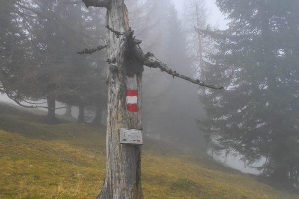 20141130-hohe-veitsch-41